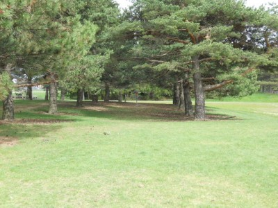 Memorial Park, Main course, Hole 9 Midrange approach
