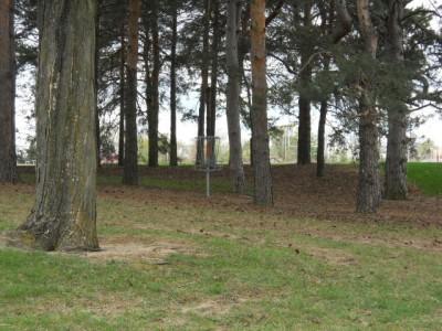 Memorial Park, Main course, Hole 8 Short approach