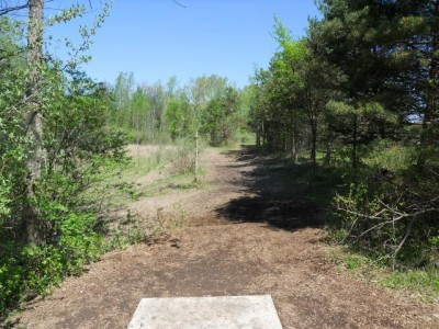 Tittabawassee Park, Main course, Hole 11 Tee pad