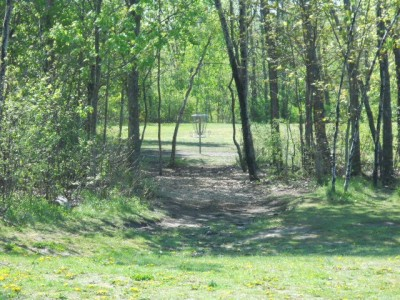 Tittabawassee Park, Main course, Hole 3 Midrange approach