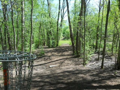 Tittabawassee Park, Main course, Hole 8 Reverse (back up the fairway)