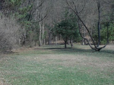 Branstrom Park, Main course, Hole 7 Tee pad