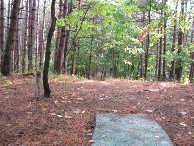Branstrom Park, Main course, Hole 6A Tee pad