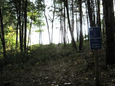 Branstrom Park, Main course, Hole 15 Tee pad