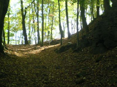Fitzgerald Park, Main course, Hole 10 Midrange approach