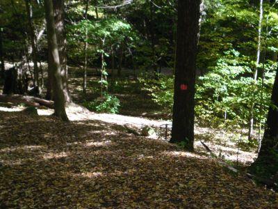 Fitzgerald Park, Main course, Hole 3 Short approach