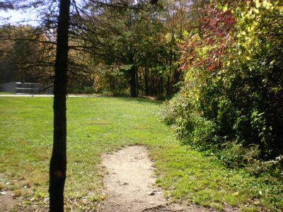 Fitzgerald Park, Main course, Hole 11 Tee pad