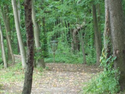 Fitzgerald Park, Main course, Hole 15 Midrange approach