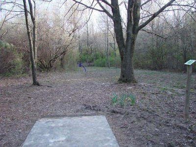 Lemon Lake County Park, Blue, Hole 17 Tee pad