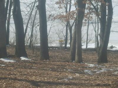 Lemon Lake County Park, Silver, Hole 3 Tee pad