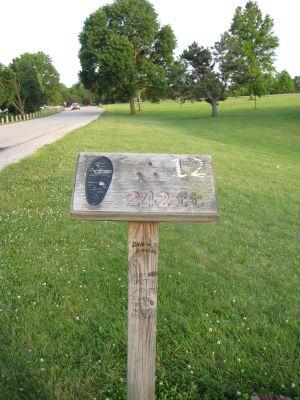 Shoaff Park, Main course, Hole 12 Tee pad