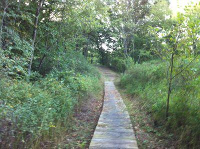 Ox Bow County Park, Main course, Hole 18 Tee pad