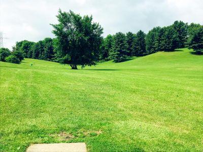 George Wilson Park, Main course, Hole 11 Tee pad