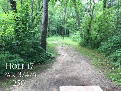 Ferrettie Baugo Creek County Park, Main course, Hole 17 Tee pad