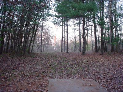 Mississinewa State Park, Main course, Hole 15 Tee pad