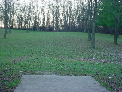 Mississinewa State Park, Main course, Hole 12 Tee pad
