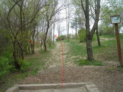 Rogers Lakewood Park, Main course, Hole 18