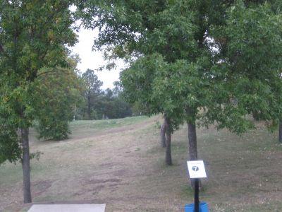 Lions Hillside Park, Main course, Hole 7 Tee pad