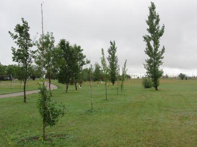 Minot Air Force Base, Main course, Hole 6 Long tee pad
