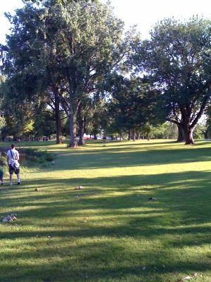 Riverside Park, Main course, Hole 14 Midrange approach
