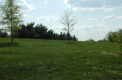 Grubaugh Park, Main course, Hole 13 Long approach