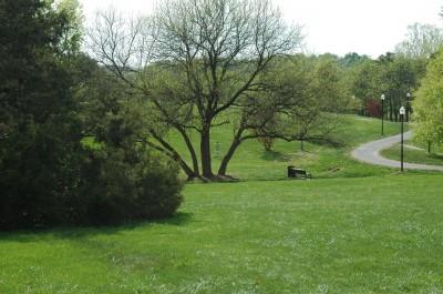 Grubaugh Park, Main course, Hole 12 Long approach