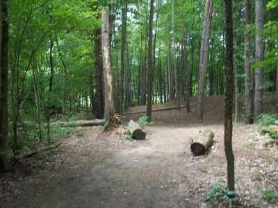 Winstrom Preserve, Main course, Hole 5 Tee pad