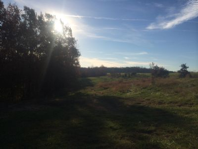 Quail Ridge, Main course, Hole 18 Tee pad