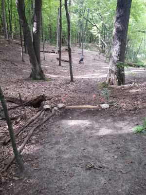 Holly Woods, Main course, Hole 16 Short tee pad