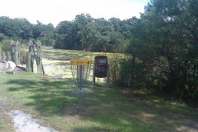 Tidal Creek @ W. Ashley Park, Main course, Hole 8 Putt