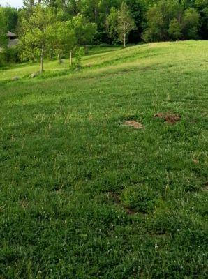 MTU Disc Golf, Main course, Hole 8 Tee pad