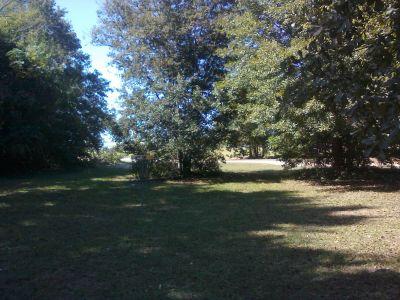 Owens Field Park, Main course, Hole 16 Putt