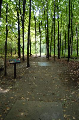Willow Metropark, Main course, Hole 4 Long tee pad