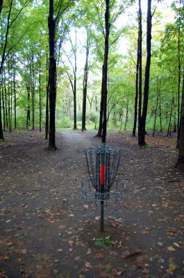 Willow Metropark, Main course, Hole 2 Reverse (back up the fairway)
