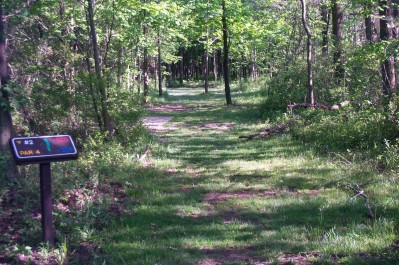 Willow Metropark, Main course, Hole 2 Long tee pad