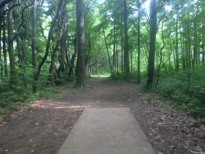Willow Metropark, Main course, Hole 18 Short tee pad