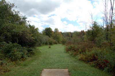 Willow Metropark, Main course, Hole 7 Short tee pad