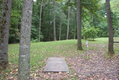 Bluemont Park, Main course, Hole 4 Short tee pad