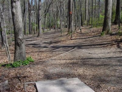 Bluemont Park, Main course, Hole 6 Short tee pad