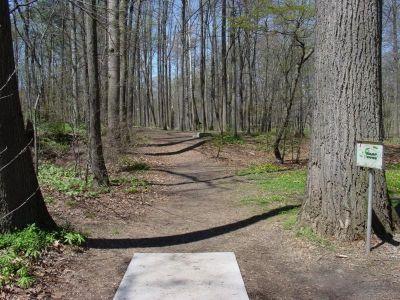 Bluemont Park, Main course, Hole 7 Short tee pad