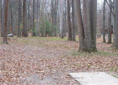 Bluemont Park, Main course, Hole 8 Short tee pad