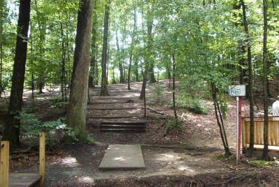Bluemont Park, Main course, Hole 5 Short tee pad