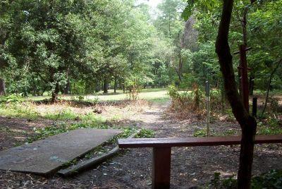 Bluemont Park, Main course, Hole 3 Short tee pad