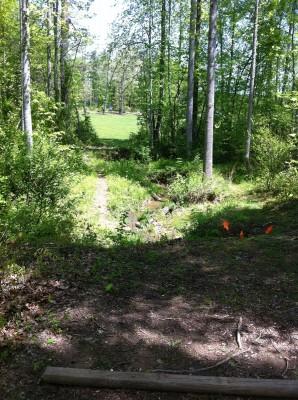 Greene Co. Community Park, Main course, Hole 11 Tee pad