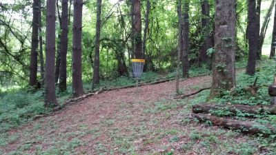 Emory and Henry, Main course, Hole 16 Short approach