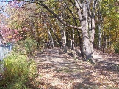 Knollwood Park, Main course, Hole 7 Tee pad