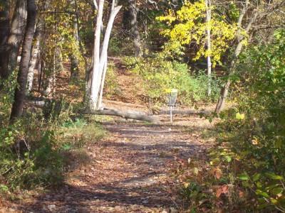 Knollwood Park, Main course, Hole 11 Short approach