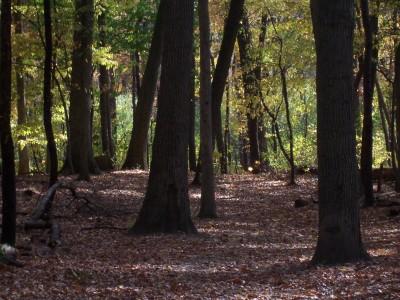 Knollwood Park, Main course, Hole 9 Midrange approach