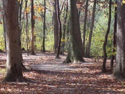 Knollwood Park, Main course, Hole 5 Midrange approach
