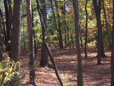 Knollwood Park, Main course, Hole 18 Midrange approach